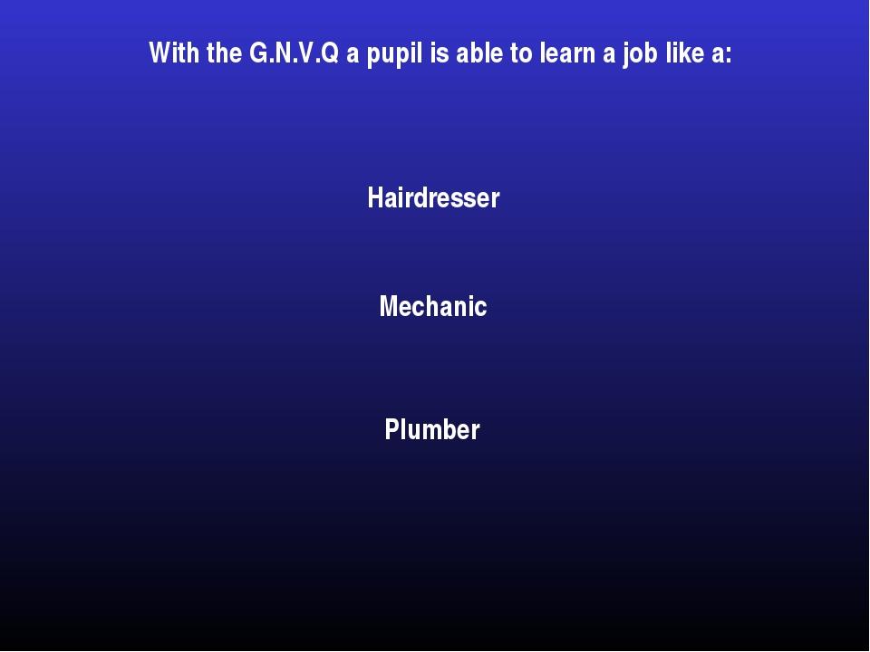 With the G.N.V.Q a pupil is able to learn a job like a: Plumber Hairdresser M...