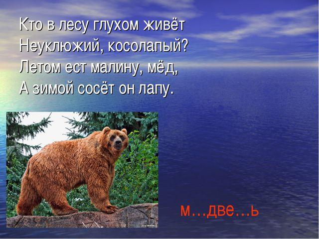 Кто в лесу глухом живёт Неуклюжий, косолапый? Летом ест малину, мёд, А зимой...