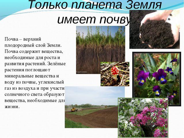 Только планета Земля имеет почву Почва – верхний плодородный слой Земли. Почв...