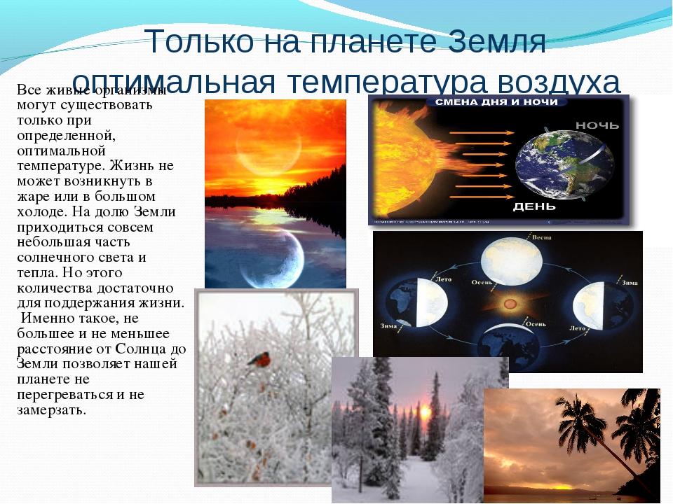 Только на планете Земля оптимальная температура воздуха Все живые организмы м...