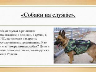 «Собаки на службе». Собаки служат в различных организациях: в полиции, в арм