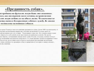 «Преданность собак». В России в городе Тольятти тоже есть памятник преданност