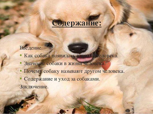Содержание: Ввeдeниe. Как собака появилась в жизни человека. Значение собаки...