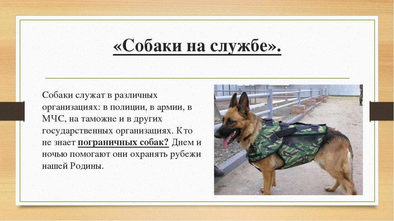«Собаки на службе». Собаки служат в различных организациях: в полиции, в арм...