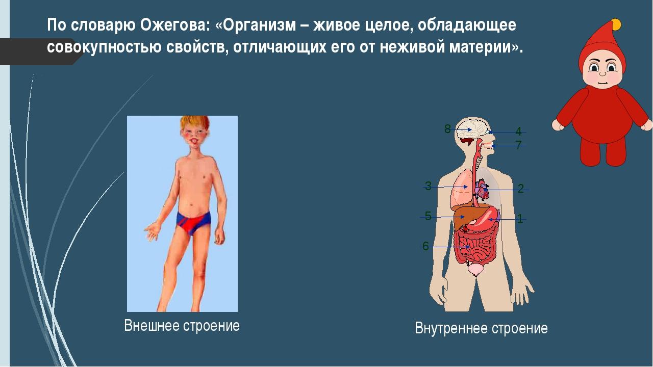 По словарю Ожегова: «Организм – живое целое, обладающее совокупностью свойств...