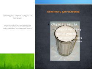 Опасность для человека Приводят к порче продуктов питания: молочнокислые бакт