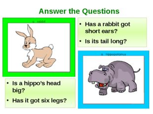 Is a hippo's head big? Has it got six legs? Has a rabbit got short ears? Is i