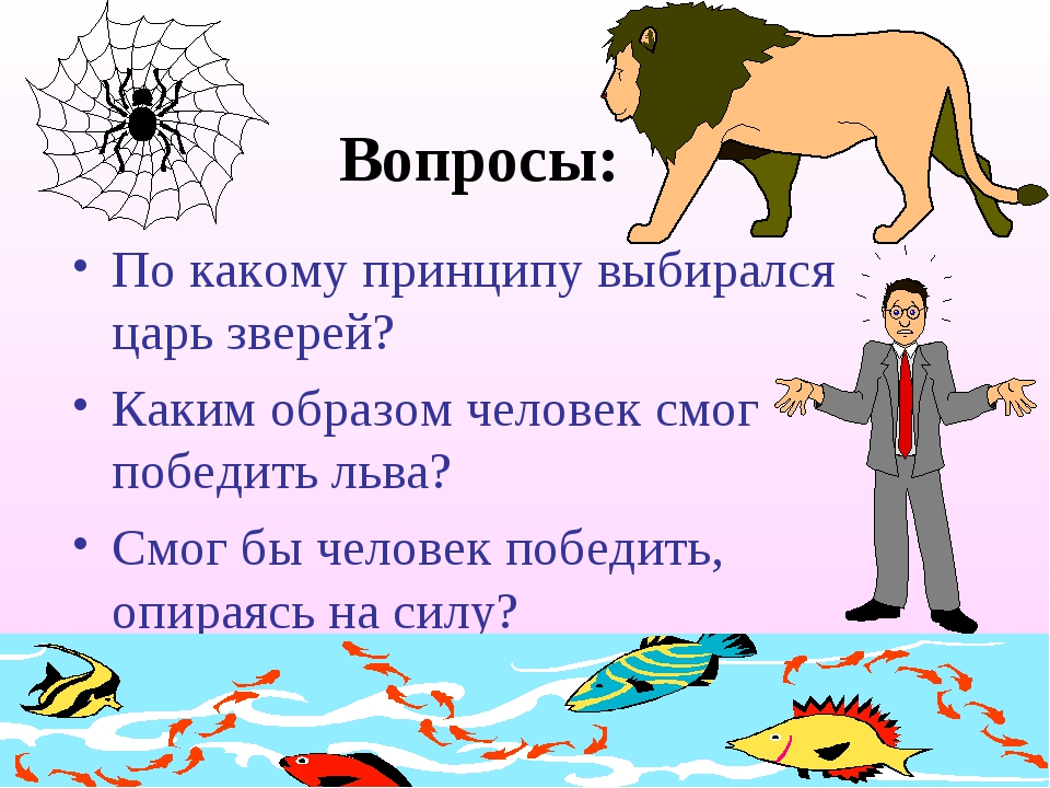 Вопросы: По какому принципу выбирался царь зверей? Каким образом человек смог...