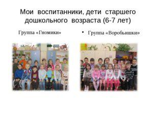 Мои воспитанники, дети старшего дошкольного возраста (6-7 лет) Группа «Воробь