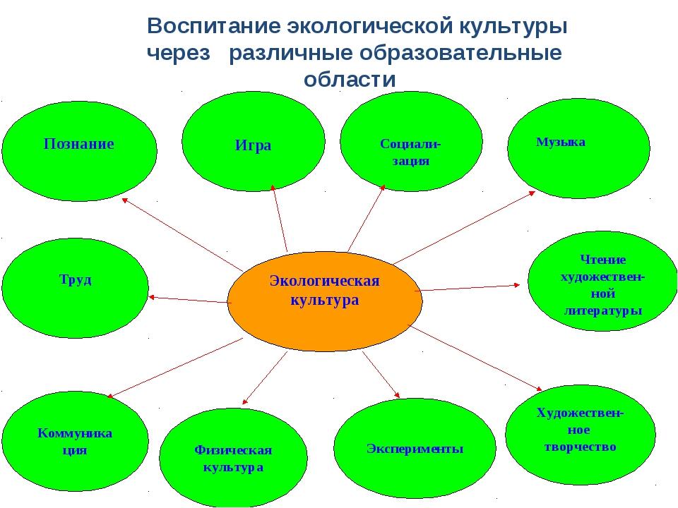 Воспитание экологической культуры через различные образовательные области
