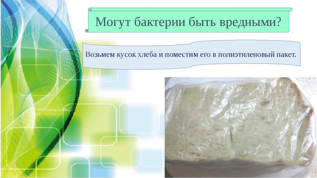 Могут бактерии быть вредными? Возьмем кусок хлеба и поместим его в полиэтилен...