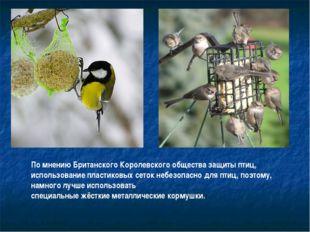 По мнению Британского Королевского общества защиты птиц, использование пласти