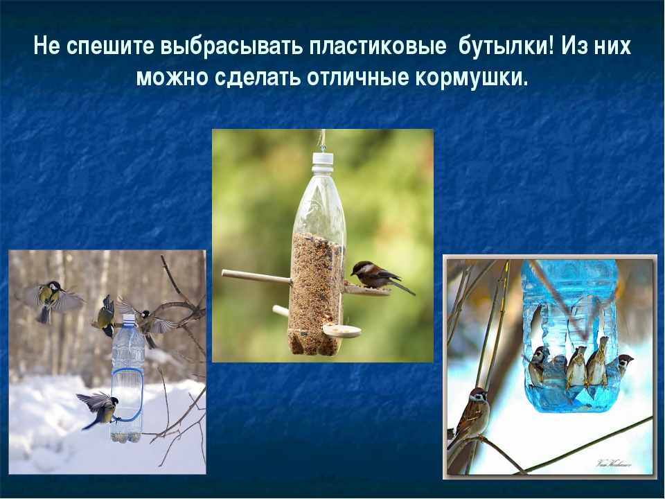 Не спешите выбрасывать пластиковые бутылки! Из них можно сделать отличные кор...