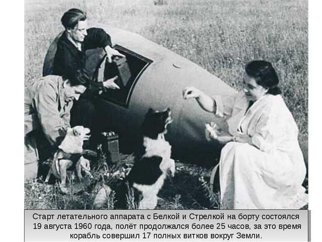 Старт летательного аппарата с Белкой и Стрелкой на борту состоялся 19 август...