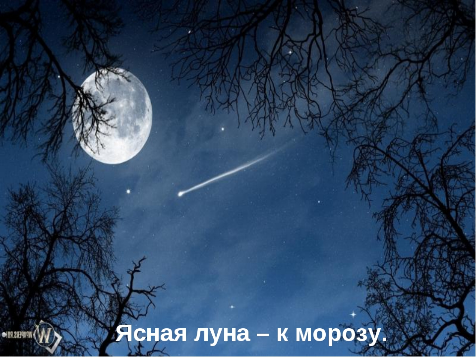 Ясная луна – к морозу.