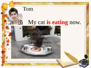 Tom My cat is eating now.