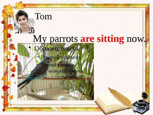 Tom My parrots are sitting now.