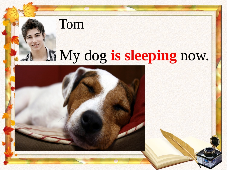 My dog is sleeping now. Tom