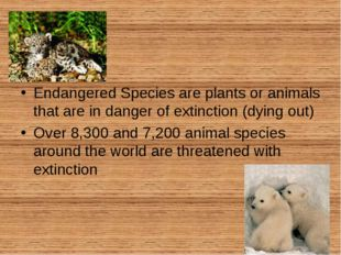 Endangered Species are plants or animals that are in danger of extinction (d