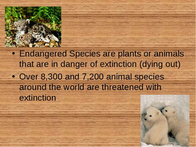 Endangered Species are plants or animals that are in danger of extinction (d...