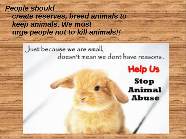 People should create reserves, breed animals to keep animals. We must urge pe...