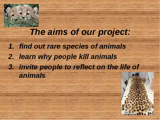 The aims of our project: find out rare species of animals learn why people k...