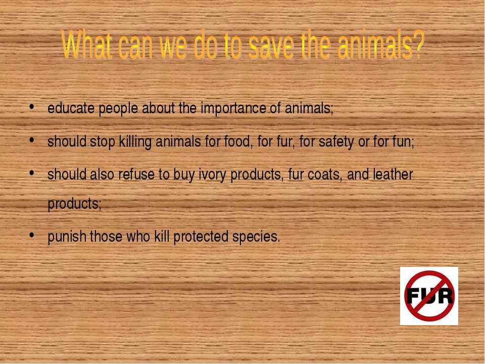 educate people about the importance of animals; should stop killing animals f...