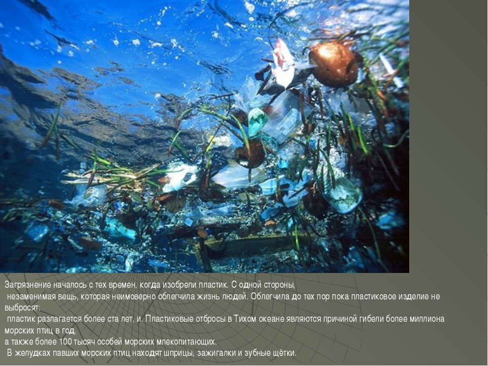 Загрязнение началось с тех времен, когда изобрели пластик. С одной стороны, н...