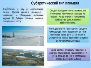 Субарктический тип климата Расположен к югу от арктического пояса. Южная гран