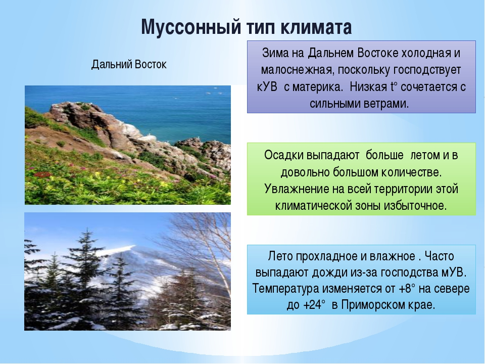 Муссонный тип климата Зима на Дальнем Востоке холодная и малоснежная, посколь...