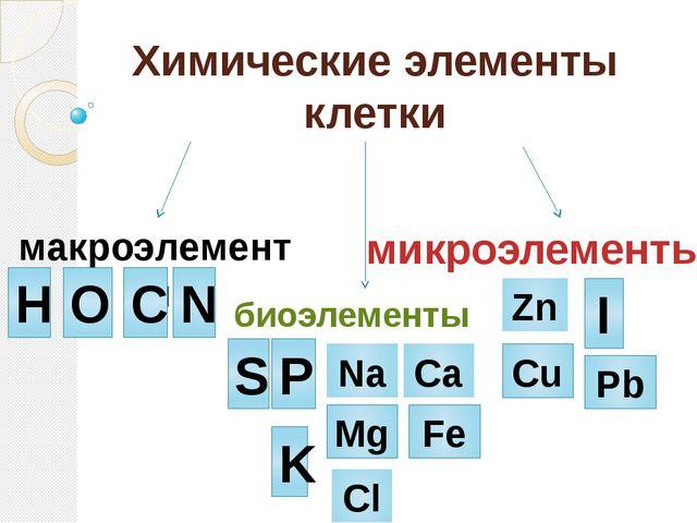 Калий (K) Калий регулирует водный баланс в организме. Нормализует ритм сердц...