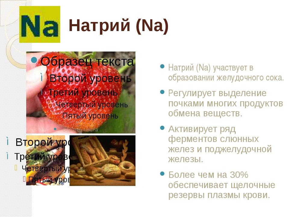 Натрий (Na) Натрий (Na) участвует в образовании желудочного сока. Регулирует...