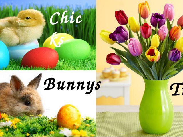 Bunnys Tulips Chicks