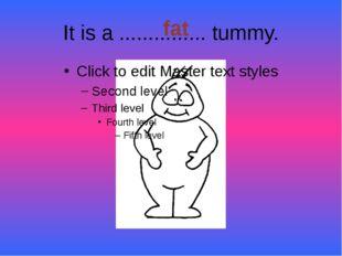 It is a ............... tummy. fat
