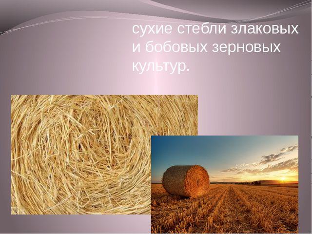 СОЛО́Ма- сухие стебли злаковых и бобовых зерновых культур.