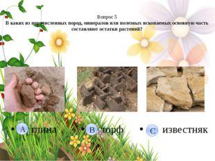Вопрос 5 В каких из перечисленных пород, минералов или полезных ископаемых о