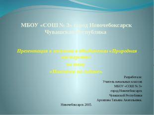 МБОУ «СОШ № 3» город Новочебоксарск Чувашская Республика  Презентация к зан