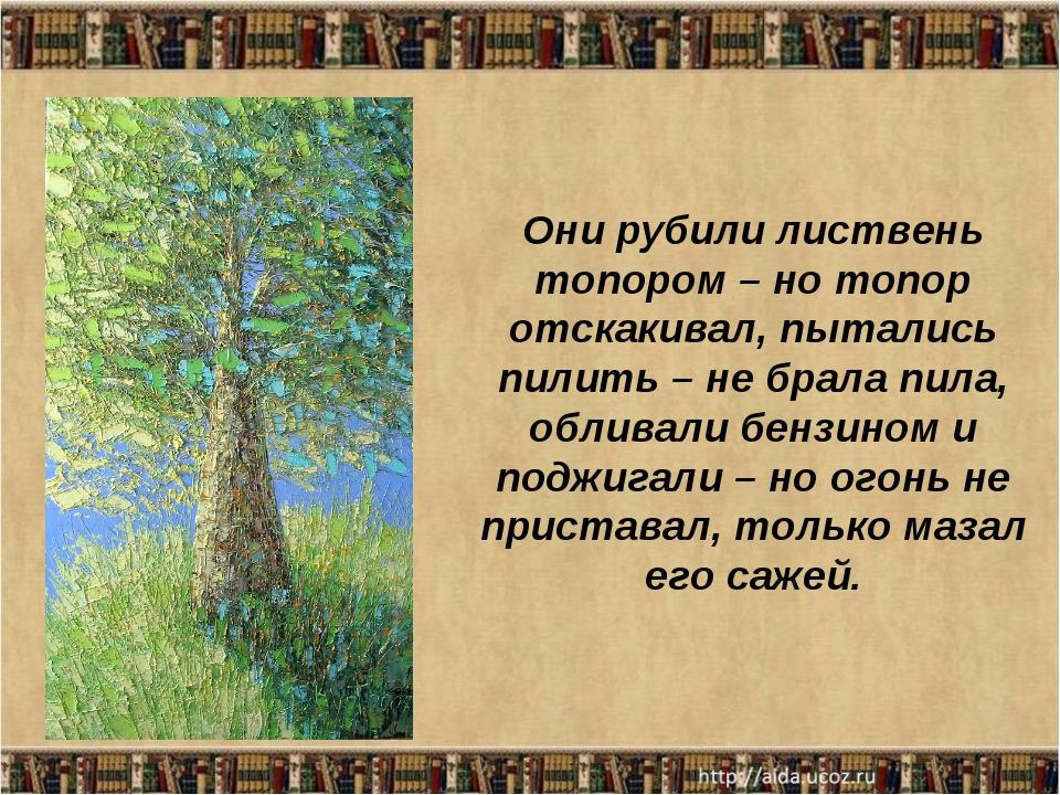 Они рубили листвень топором – но топор отскакивал, пытались пилить – не брала...