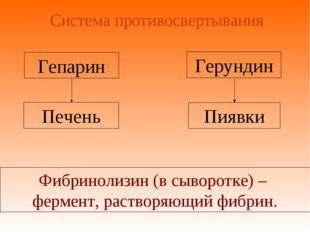 Система противосвертывания Печень Гепарин Пиявки Фибринолизин (в сыворотке) –