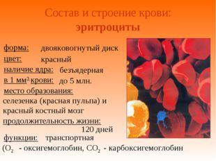 Состав и строение крови: эритроциты двояковогнутый диск красный безъядерная д