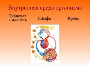 Внутренняя среда организма Тканевая жидкость Лимфа Кровь