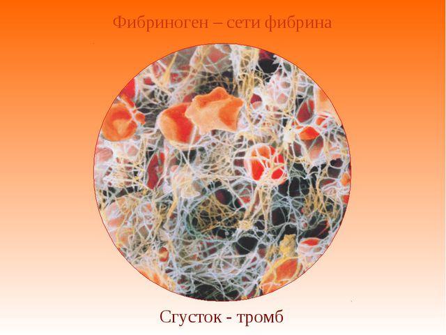 Фибриноген – сети фибрина Сгусток - тромб