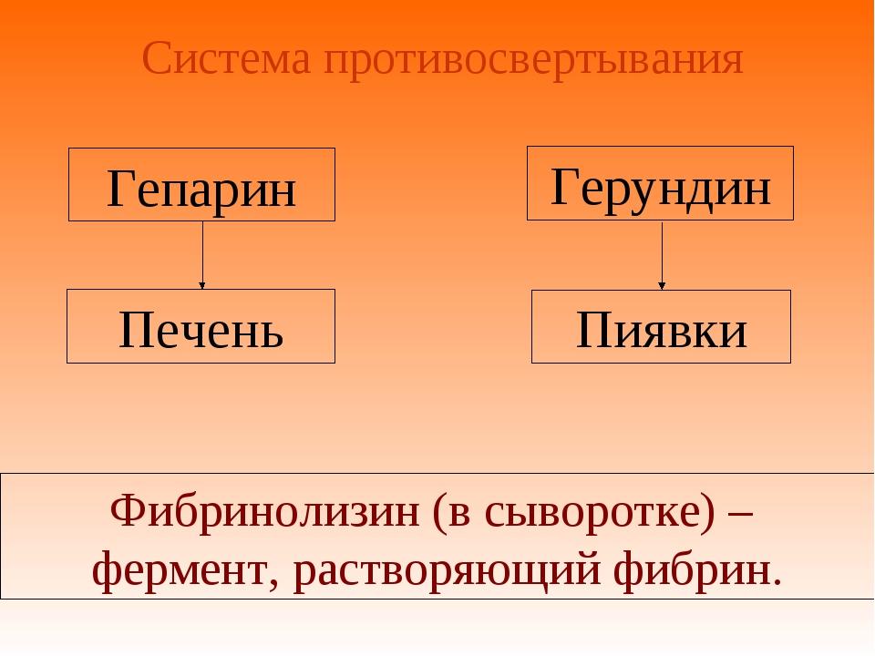 Система противосвертывания Печень Гепарин Пиявки Фибринолизин (в сыворотке) –...