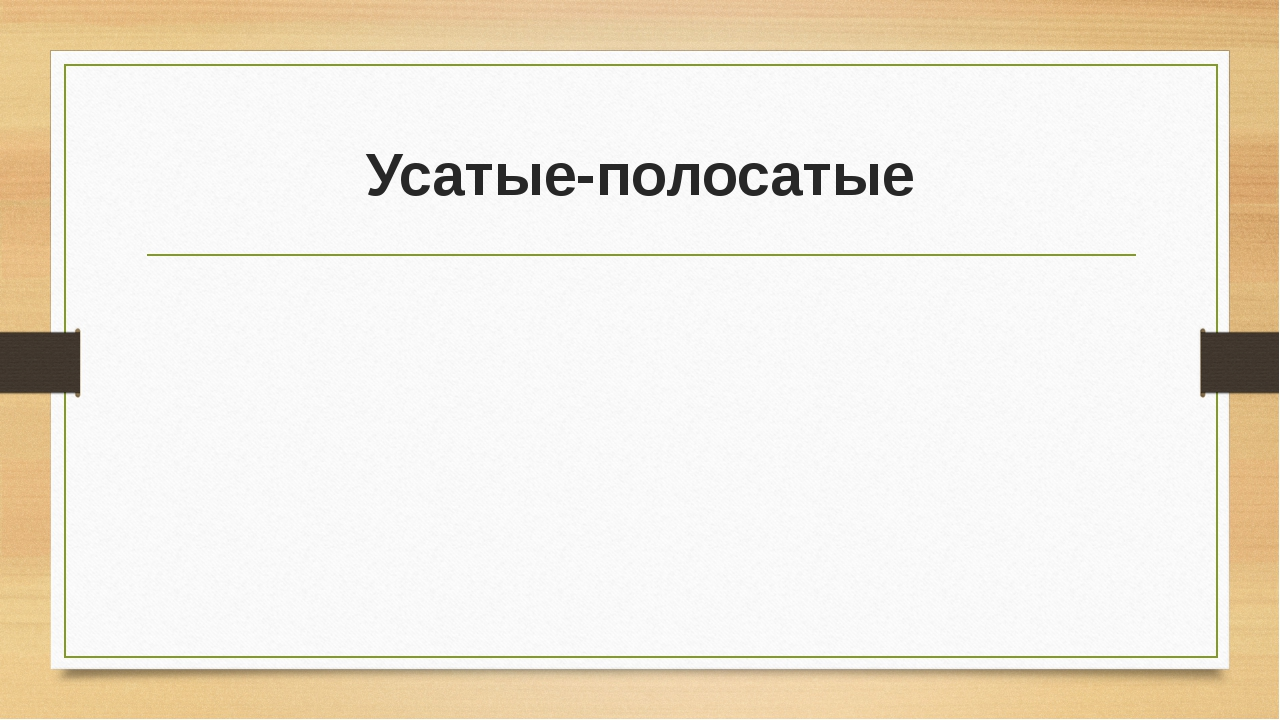 Усатые-полосатые