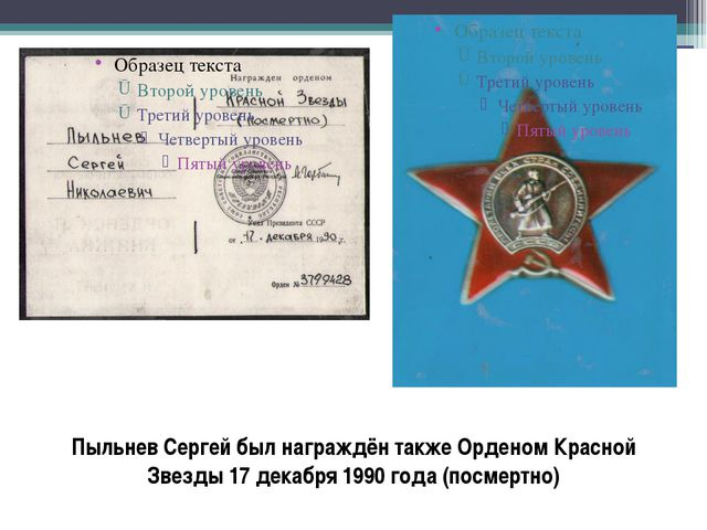 Пыльнев Сергей был награждён также Орденом Красной Звезды 17 декабря 1990 год...