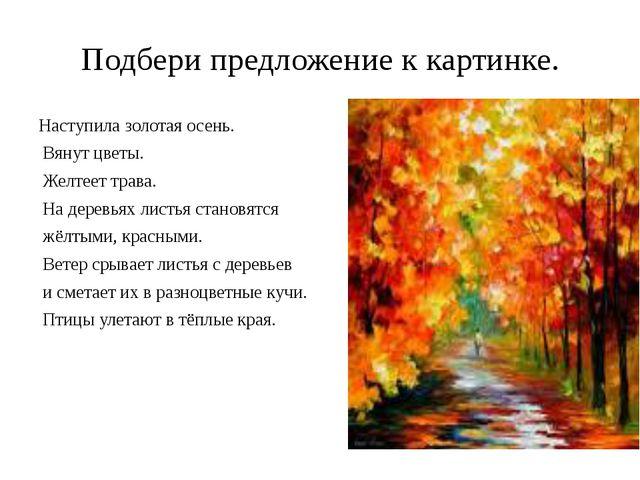 Подбери предложение к картинке. Наступила золотая осень. Вянут цветы. Желтеет...