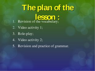 The plan of the lesson : Revision of the vocabulary; Video activity 1; 3.	Rol