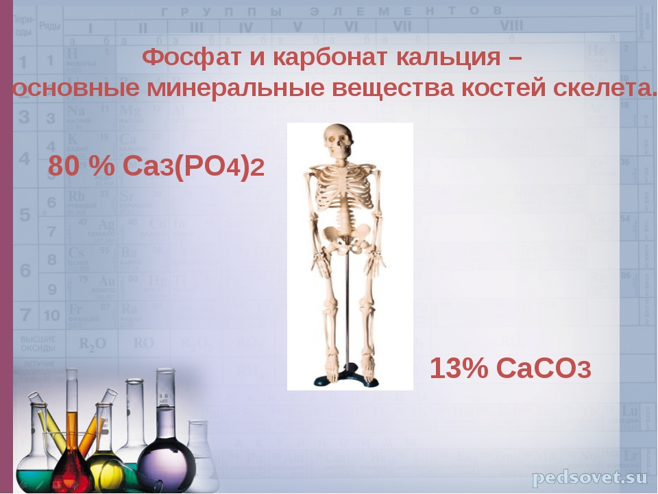 Фосфат и карбонат кальция – основные минеральные вещества костей скелета. 80...