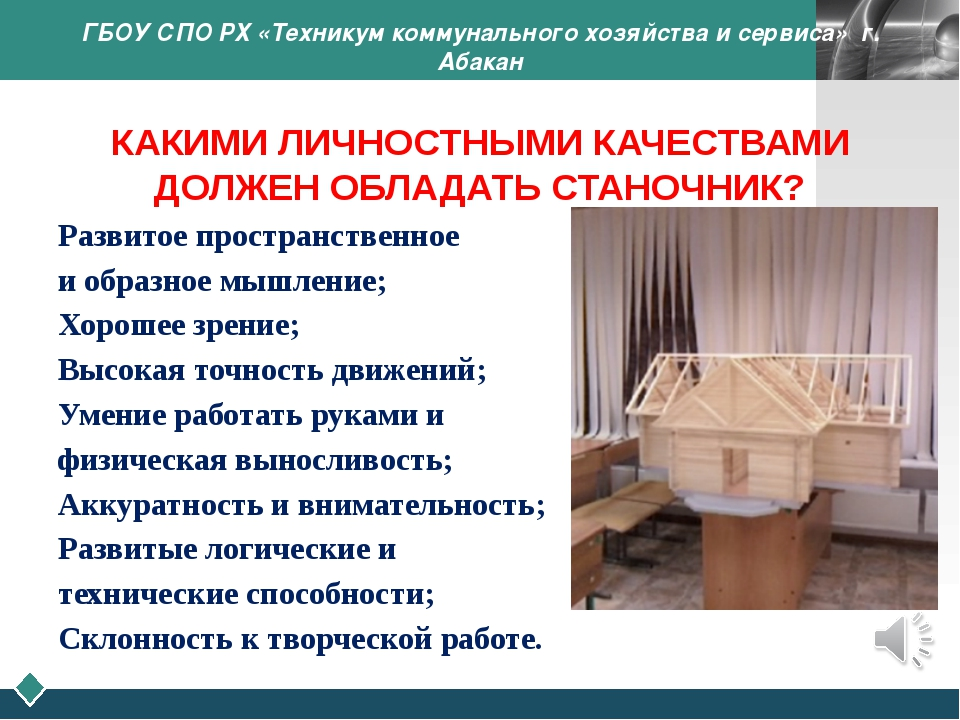 ГБОУ СПО РХ «Техникум коммунального хозяйства и сервиса» г. Абакан КАКИМИ ЛИЧ...