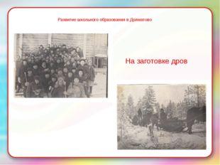 Развитие школьного образования в Долматово На заготовке дров
